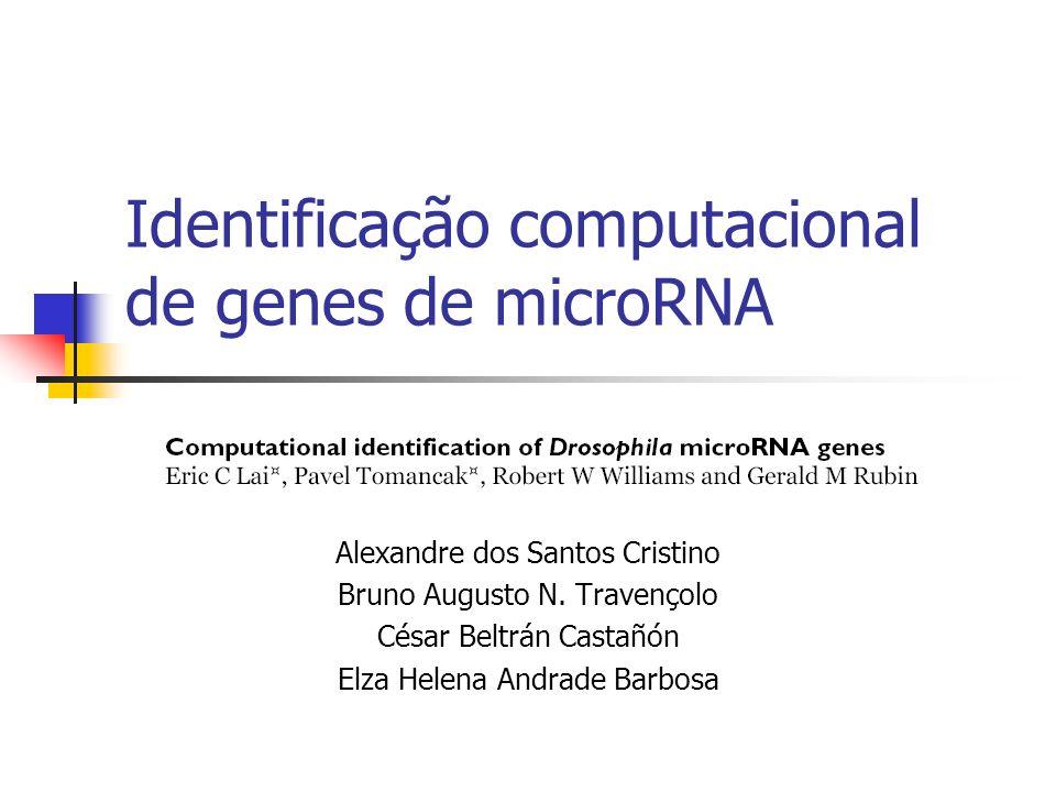 Identificação computacional de genes de microRNA