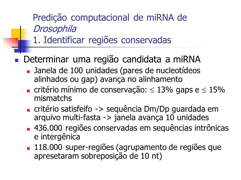 Determinar uma região candidata a miRNA