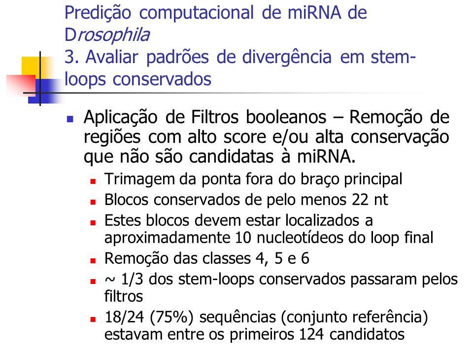 Predição computacional de miRNA de Drosophila 3