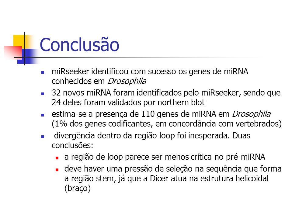 Conclusão miRseeker identificou com sucesso os genes de miRNA conhecidos em Drosophila.
