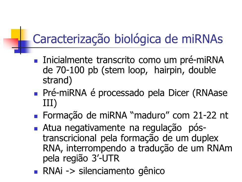 Caracterização biológica de miRNAs
