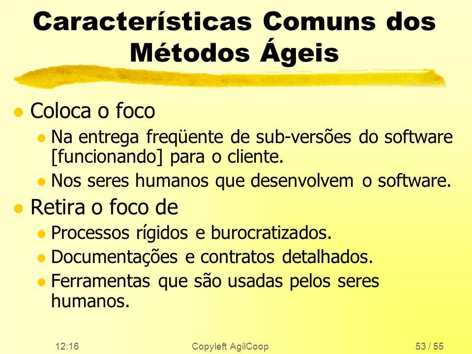 Características Comuns dos Métodos Ágeis
