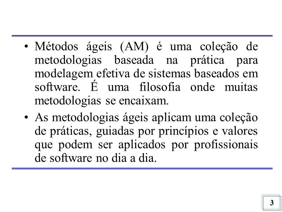 Métodos ágeis (AM) é uma coleção de metodologias baseada na prática para modelagem efetiva de sistemas baseados em software. É uma filosofia onde muitas metodologias se encaixam.