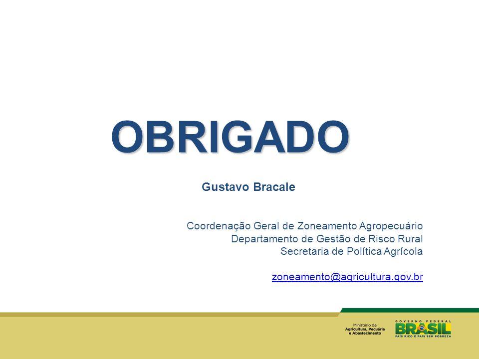 OBRIGADO Gustavo Bracale Coordenação Geral de Zoneamento Agropecuário