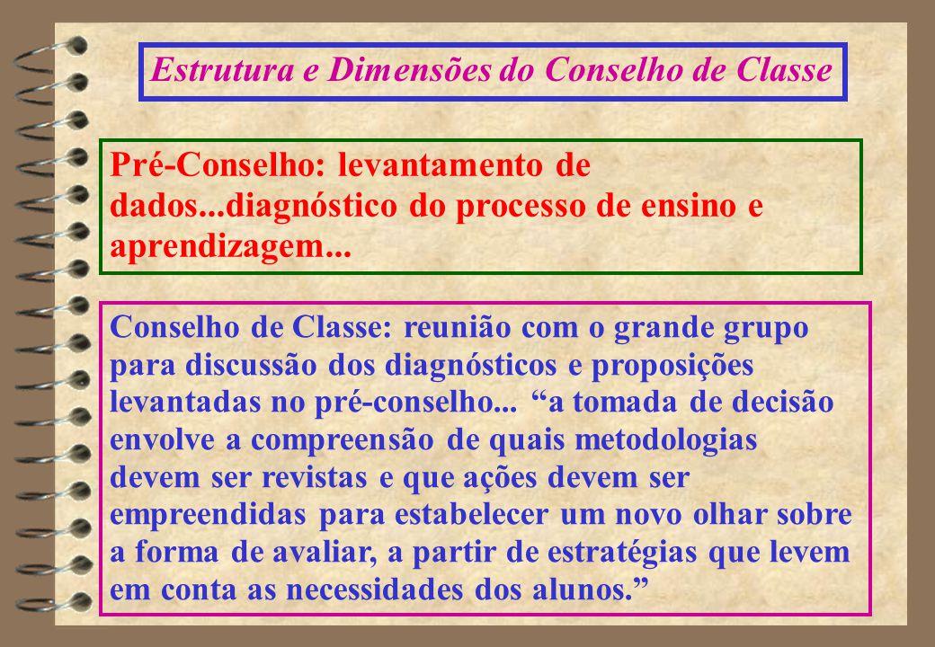 Estrutura e Dimensões do Conselho de Classe