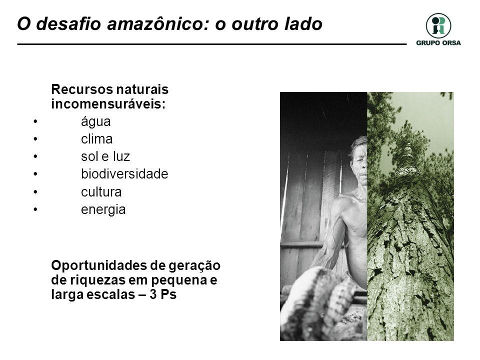 O desafio amazônico: o outro lado