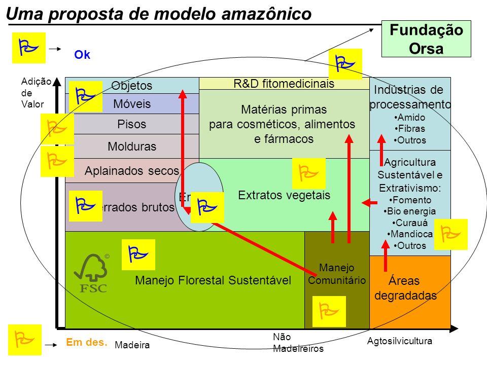 P P P P P P P P P P P P Uma proposta de modelo amazônico Fundação Orsa