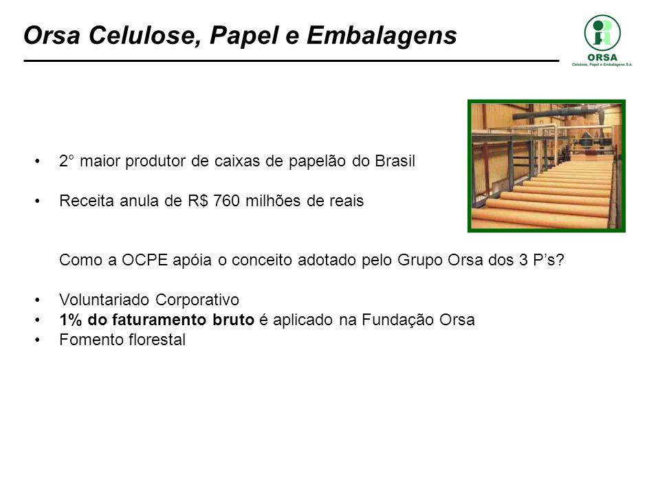 Orsa Celulose, Papel e Embalagens