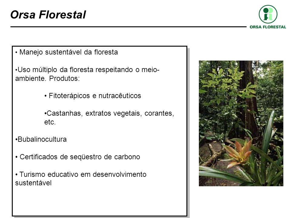 Orsa Florestal Manejo sustentável da floresta. Uso múltiplo da floresta respeitando o meio-ambiente. Produtos:
