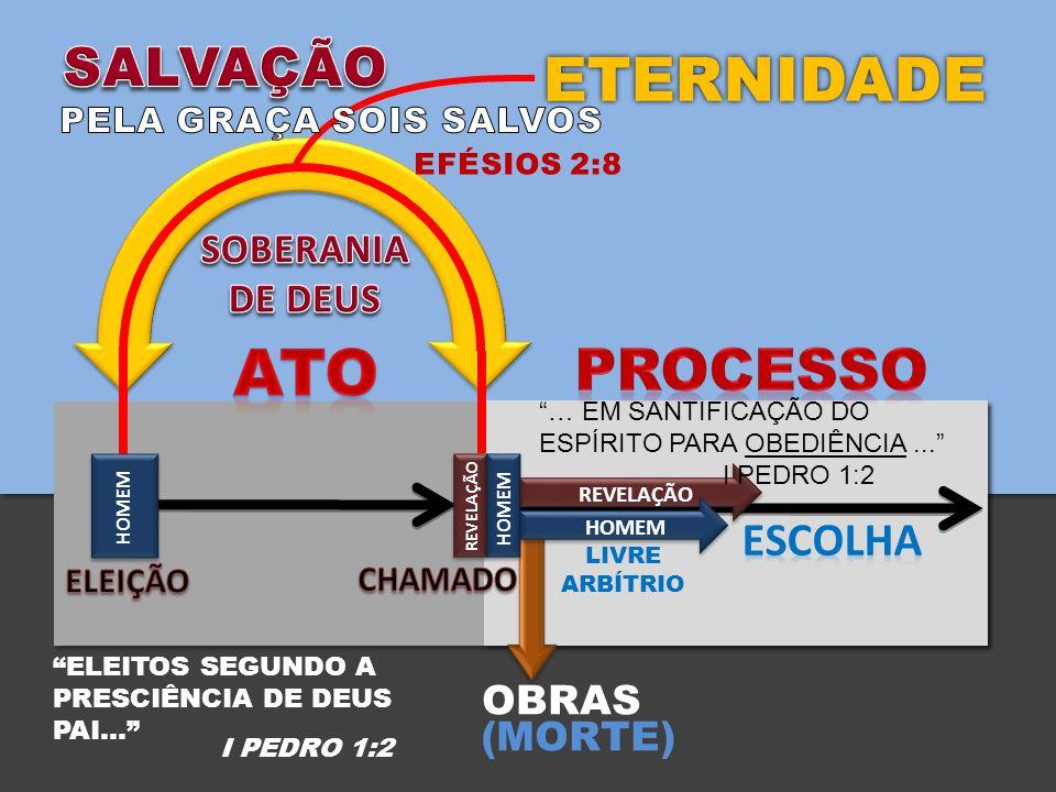 ATO ETERNIDADE PROCESSO SALVAÇÃO ESCOLHA SOBERANIA DE DEUS OBRAS