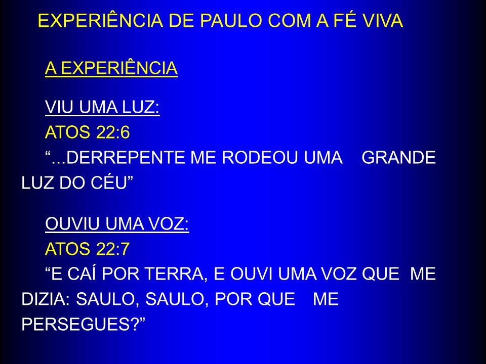 EXPERIÊNCIA DE PAULO COM A FÉ VIVA