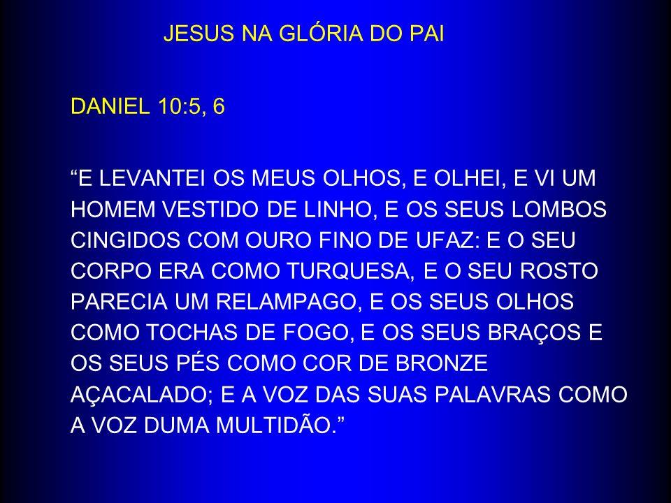 JESUS NA GLÓRIA DO PAI DANIEL 10:5, 6.