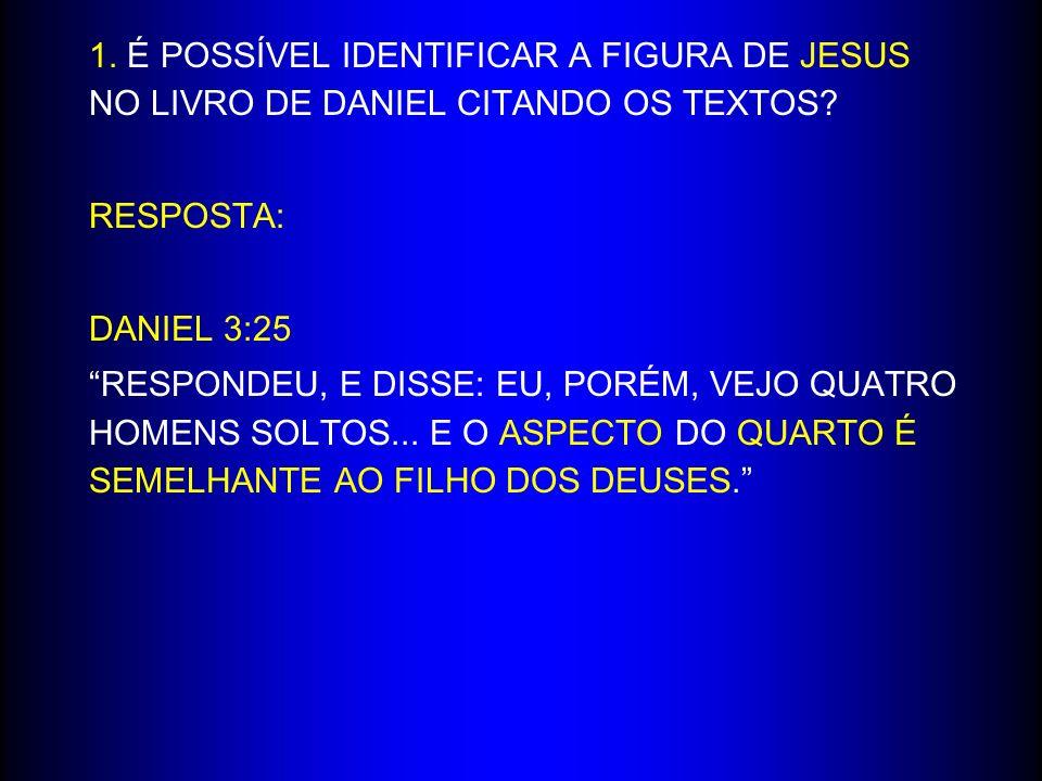 1. É POSSÍVEL IDENTIFICAR A FIGURA DE JESUS NO LIVRO DE DANIEL CITANDO OS TEXTOS