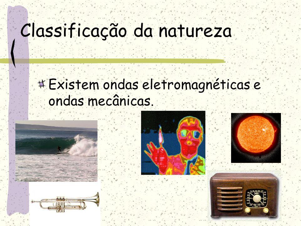 Classificação da natureza