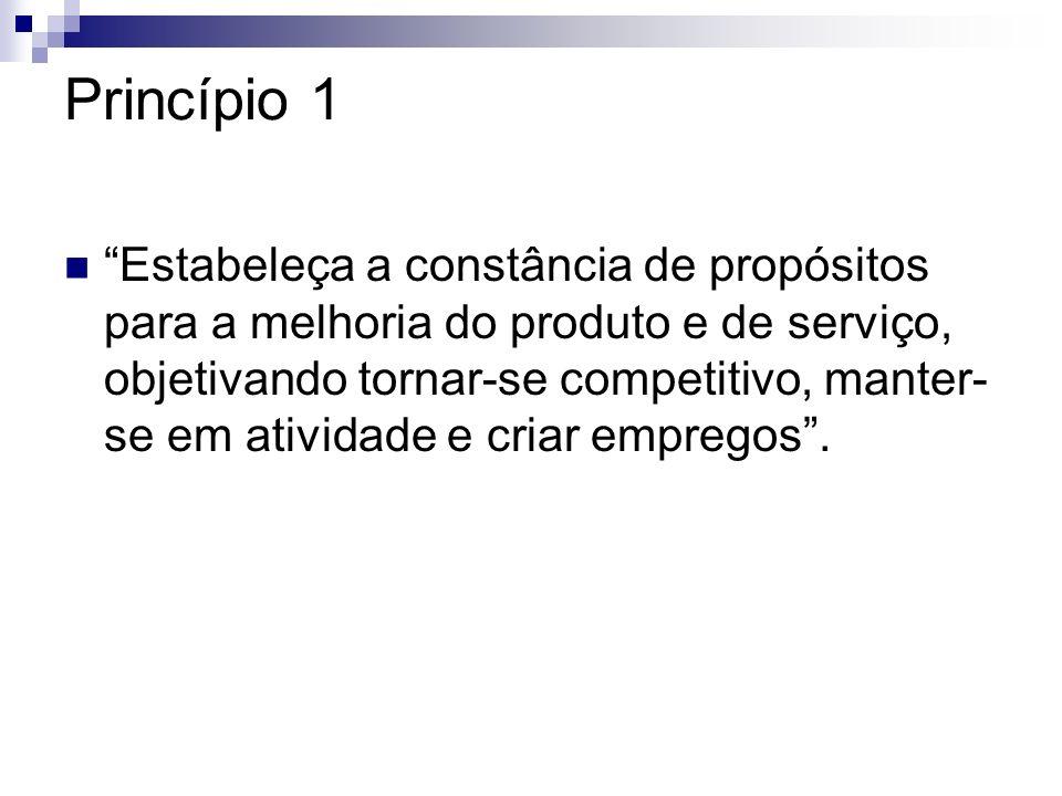 Princípio 1