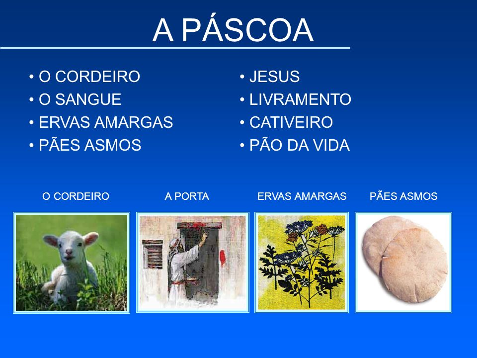 A PÁSCOA O CORDEIRO O SANGUE ERVAS AMARGAS PÃES ASMOS JESUS LIVRAMENTO