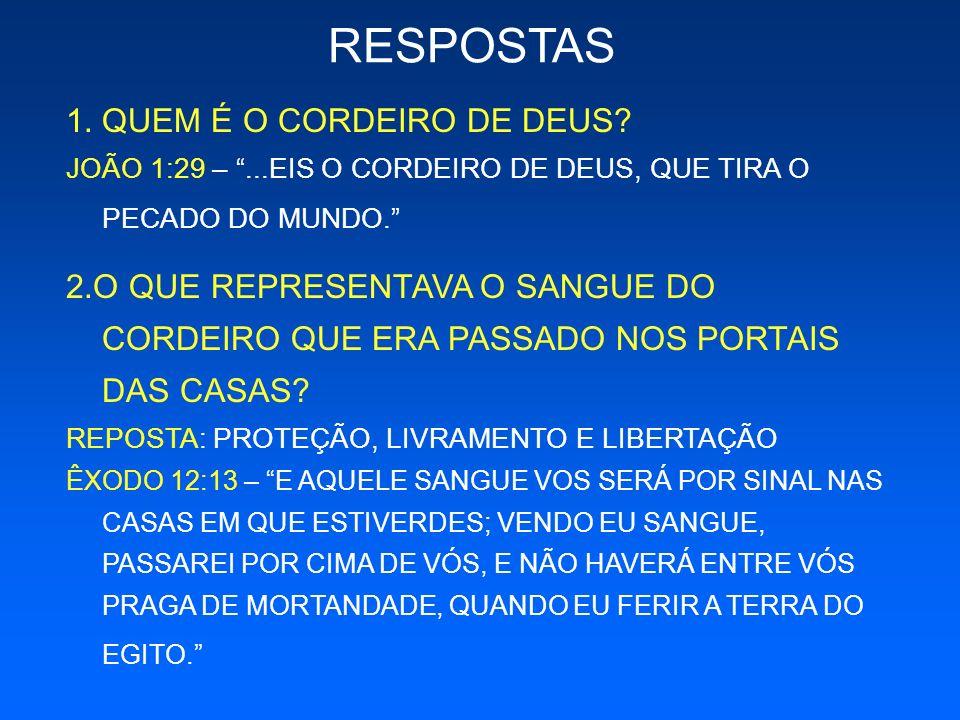 RESPOSTAS QUEM É O CORDEIRO DE DEUS
