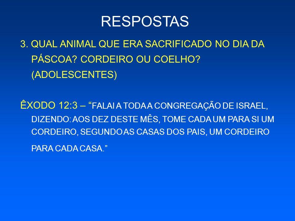 RESPOSTAS 3. QUAL ANIMAL QUE ERA SACRIFICADO NO DIA DA PÁSCOA CORDEIRO OU COELHO (ADOLESCENTES)