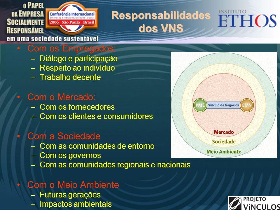 Responsabilidades dos VNS