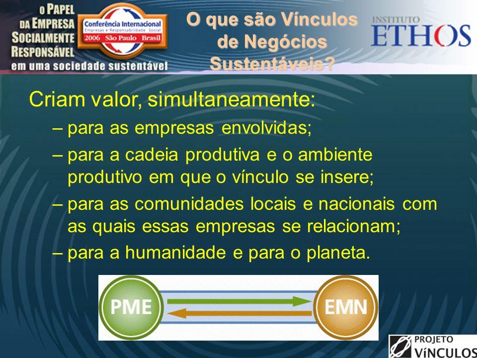 O que são Vínculos de Negócios Sustentáveis