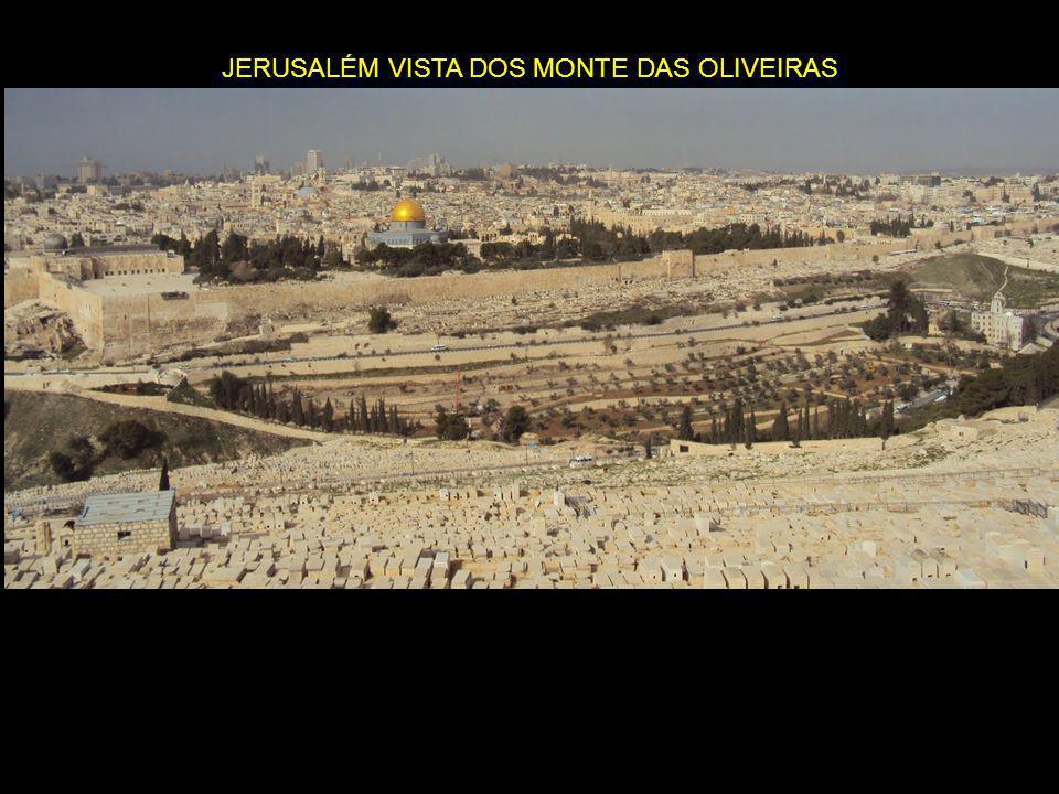 JERUSALÉM VISTA DOS MONTE DAS OLIVEIRAS