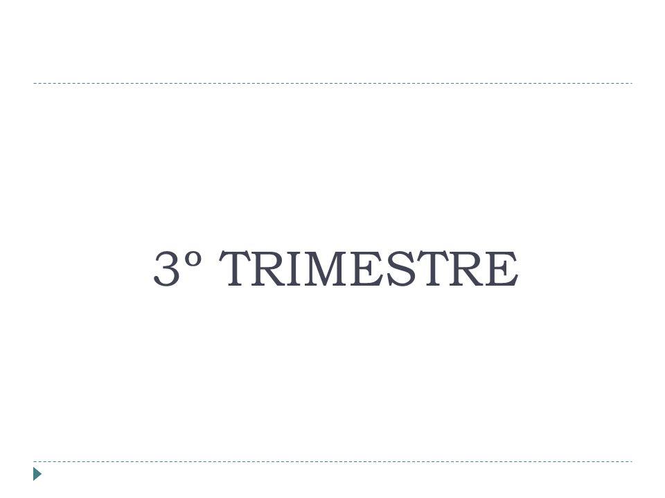 3º TRIMESTRE