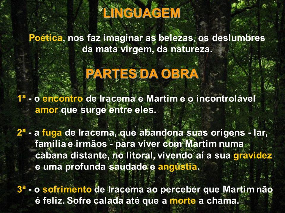 LINGUAGEM PARTES DA OBRA