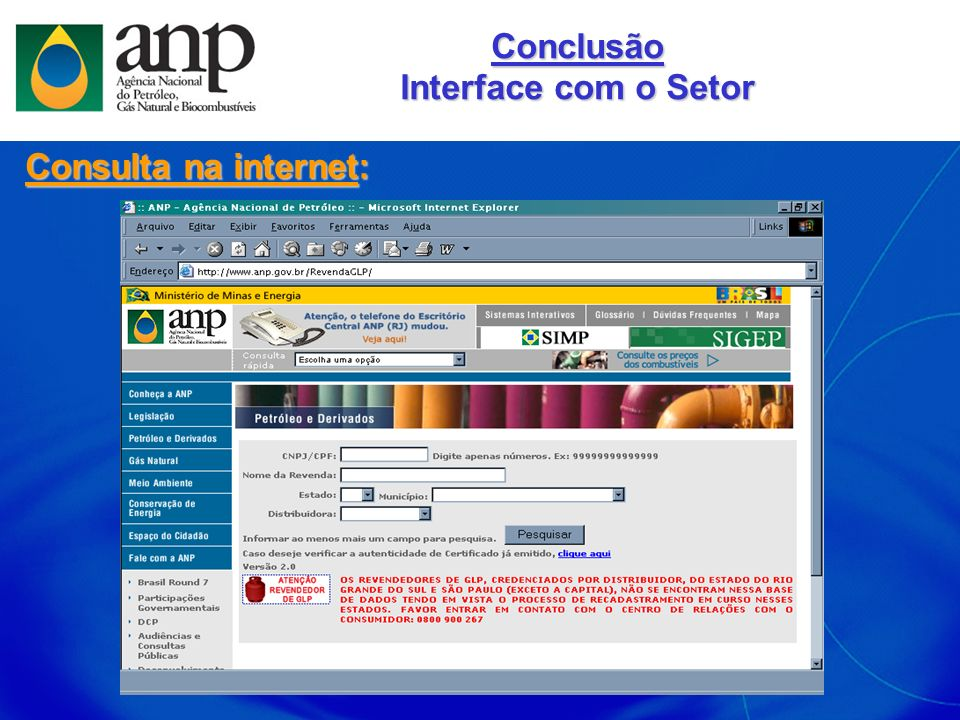 Conclusão Interface com o Setor Consulta na internet: