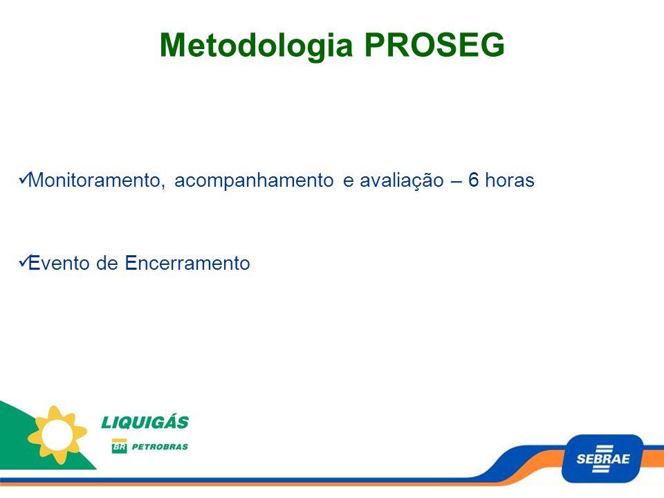 Metodologia PROSEG Monitoramento, acompanhamento e avaliação – 6 horas
