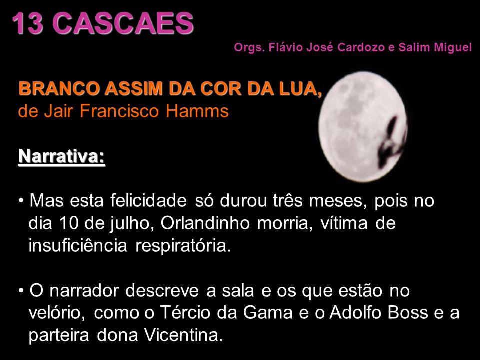 13 CASCAES BRANCO ASSIM DA COR DA LUA, de Jair Francisco Hamms