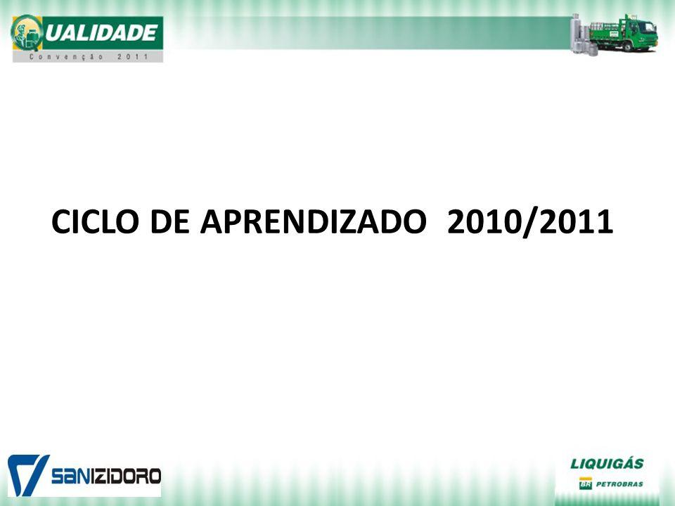 CICLO DE APRENDIZADO 2010/2011