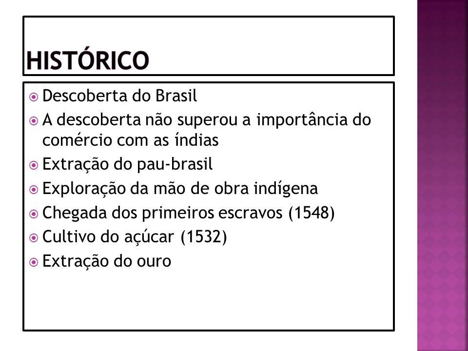 Histórico Descoberta do Brasil