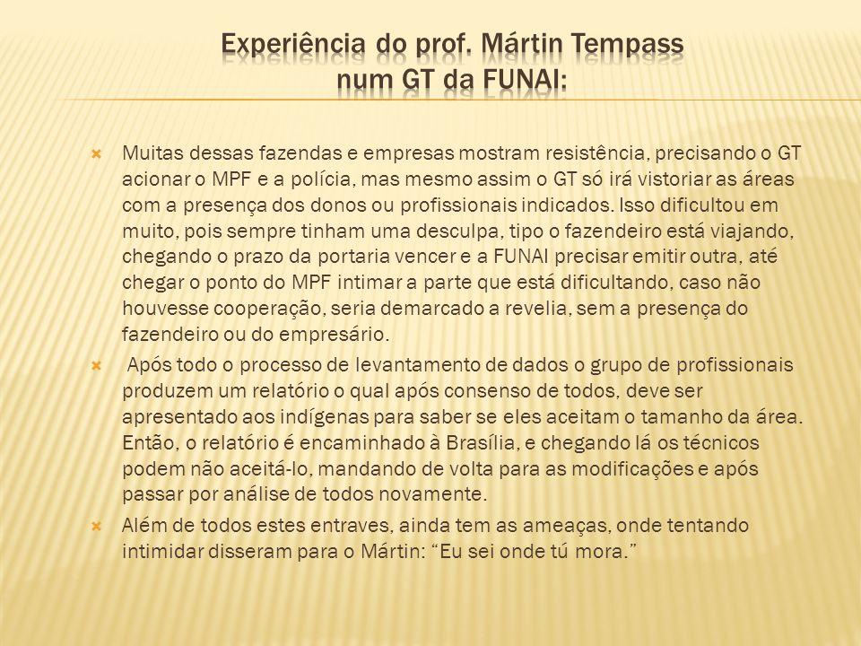 Experiência do prof. Mártin Tempass num GT da FUNAI: