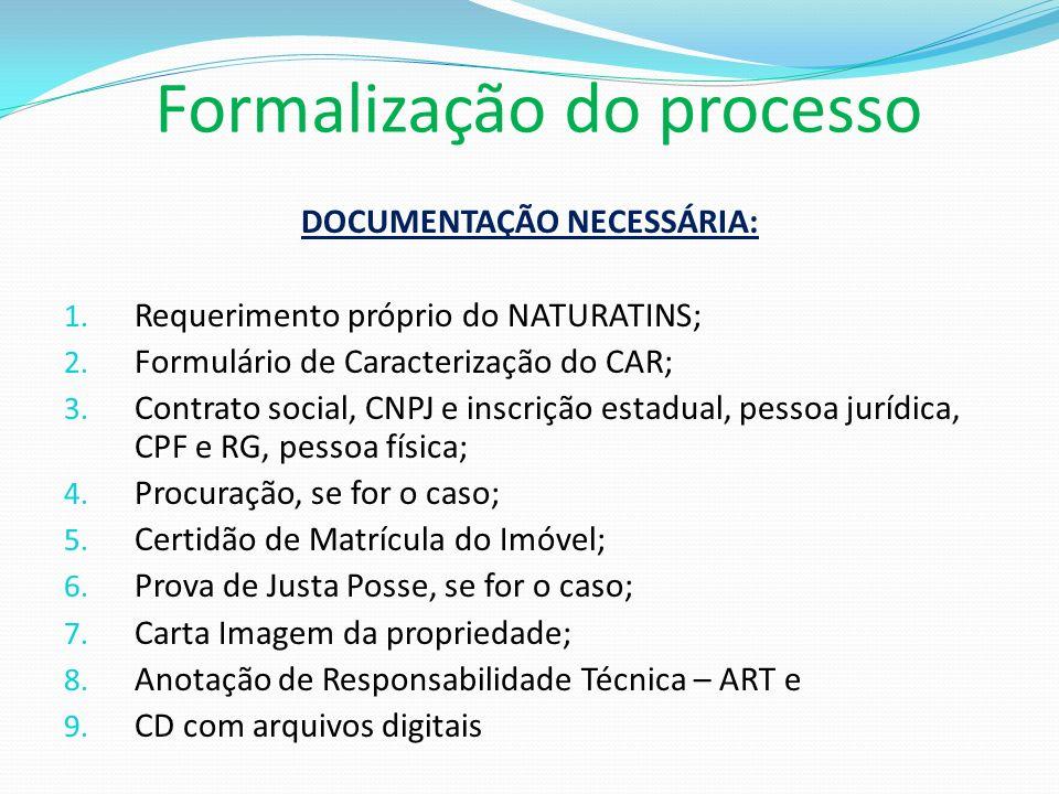Formalização do processo