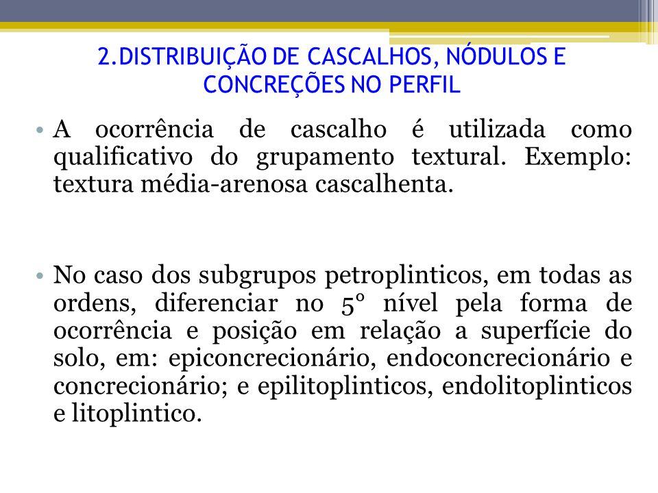 2.DISTRIBUIÇÃO DE CASCALHOS, NÓDULOS E CONCREÇÕES NO PERFIL