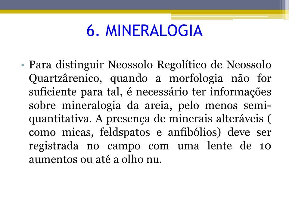 6. MINERALOGIA
