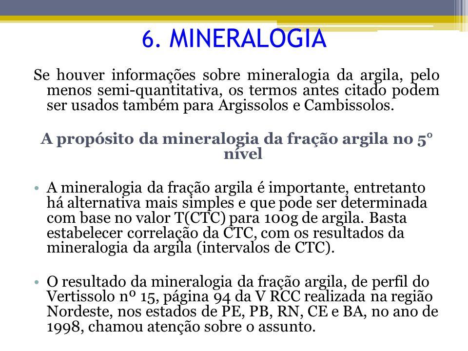 A propósito da mineralogia da fração argila no 5° nível