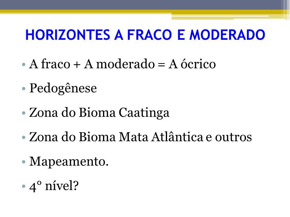 HORIZONTES A FRACO E MODERADO