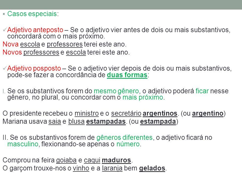 Casos especiais: Adjetivo anteposto – Se o adjetivo vier antes de dois ou mais substantivos, concordará com o mais próximo.