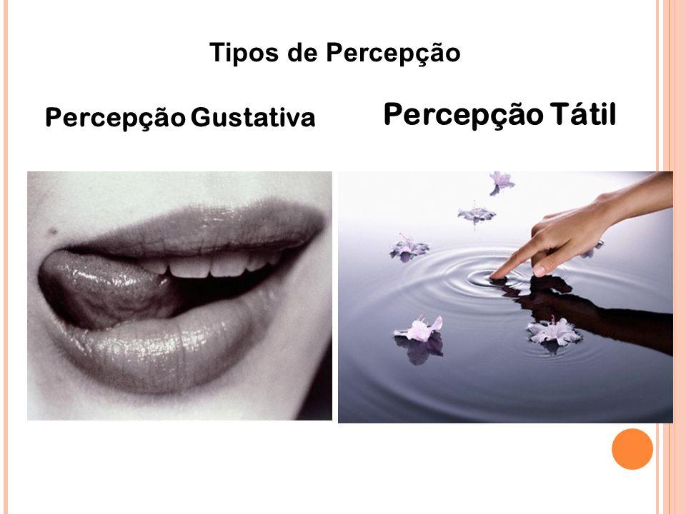 Tipos de Percepção Percepção Tátil Percepção Gustativa