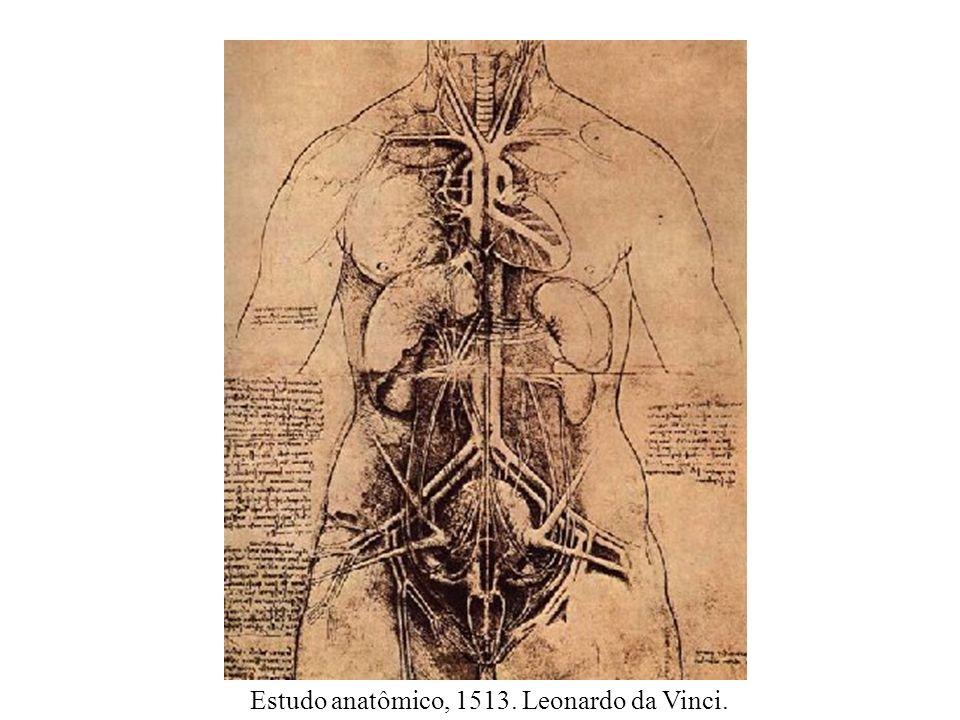 Estudo anatômico, 1513. Leonardo da Vinci.