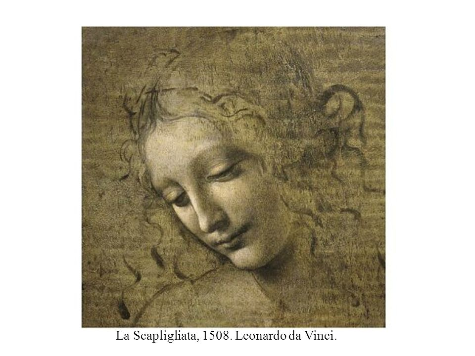 La Scapligliata, 1508. Leonardo da Vinci.
