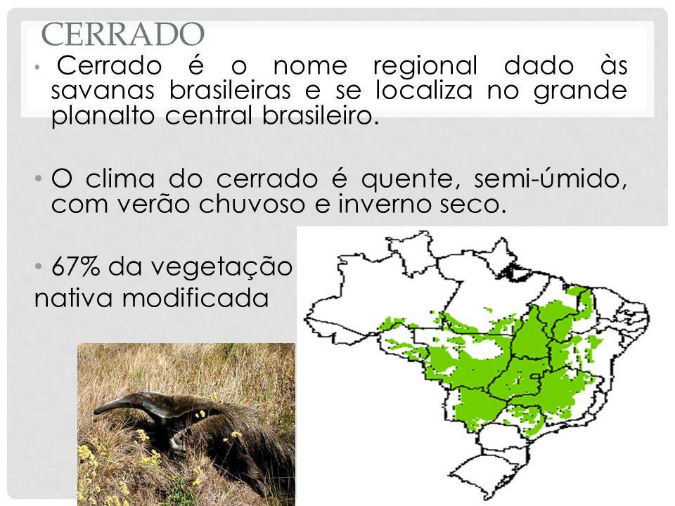 CerradoCerrado é o nome regional dado às savanas brasileiras e se localiza no grande planalto central brasileiro.