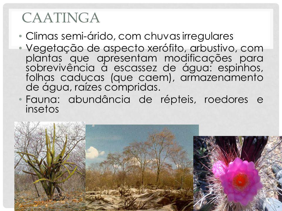 Caatinga Climas semi-árido, com chuvas irregulares