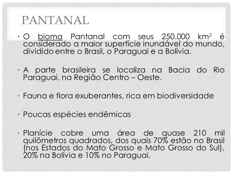 PantanalO bioma Pantanal com seus 250.000 km2 é considerado a maior superfície inundável do mundo, dividido entre o Brasil, o Paraguai e a Bolívia.