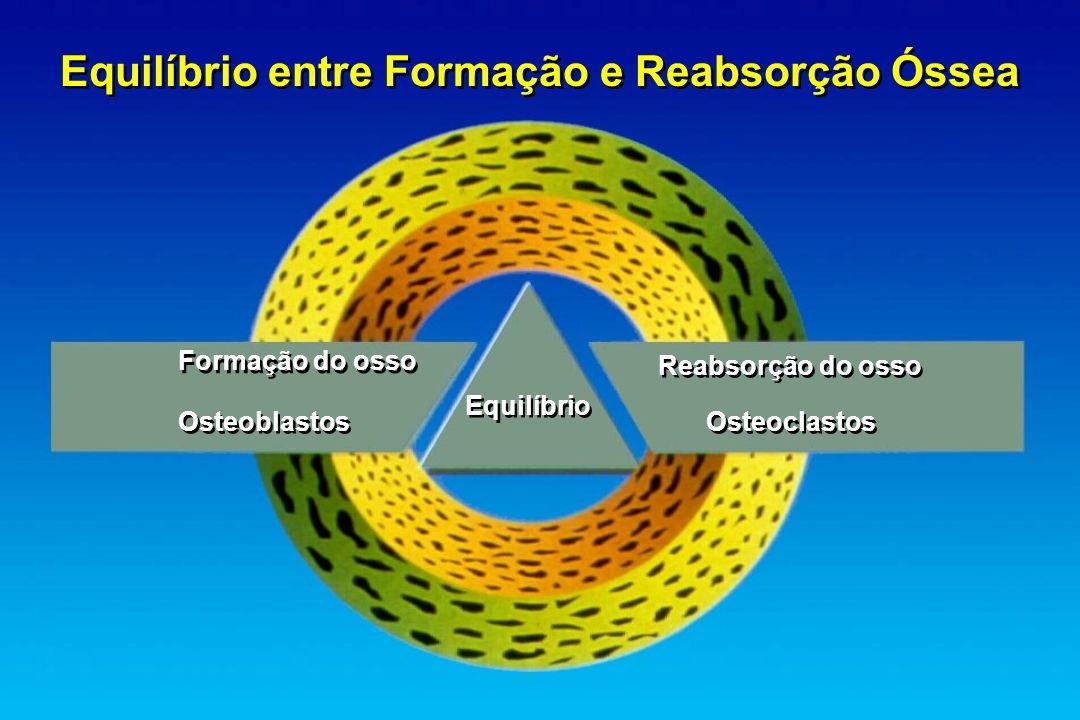 Equilíbrio entre Formação e Reabsorção Óssea