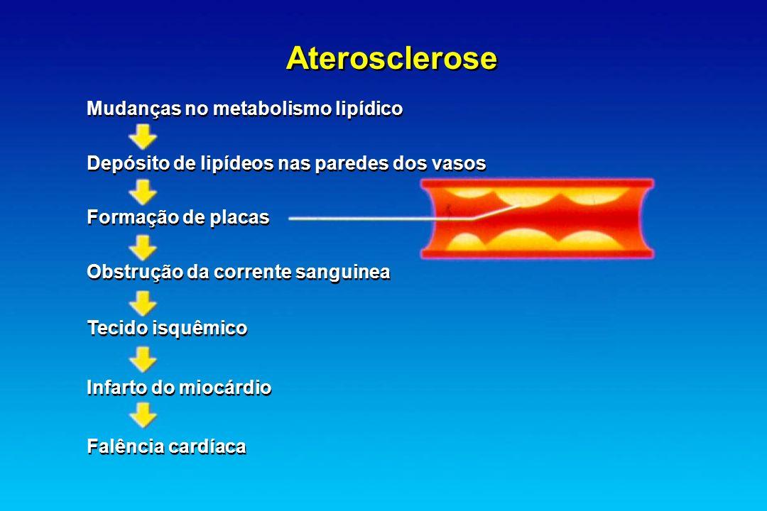 Aterosclerose Mudanças no metabolismo lipídico
