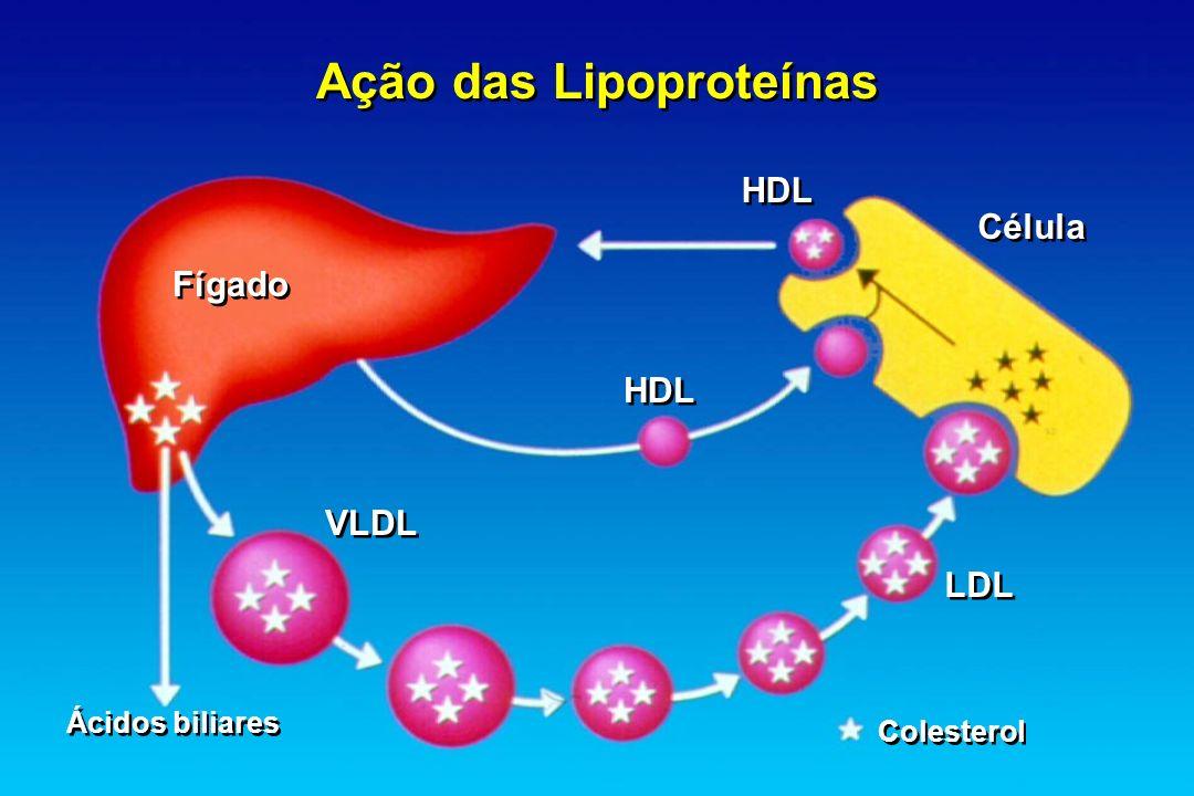 Ação das Lipoproteínas