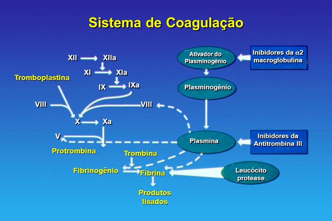 Inibidores da 2 macroglobulina