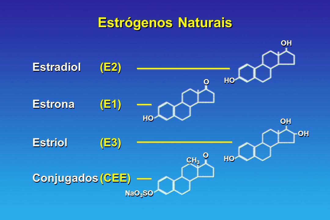 Estrógenos Naturais Estradiol (E2) Estrona (E1) Estriol (E3)